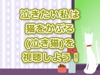 泣きたい私は猫をかぶる(泣き猫)アニメ感想