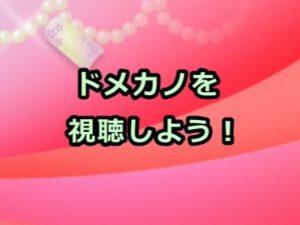 ドメカノ(ドメスティックな彼女)アニメ感想